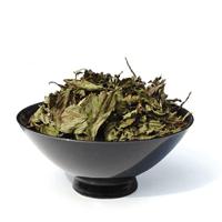 Herbs T - Z